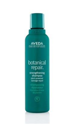 Botanical Repair Shampoo 200 Ml